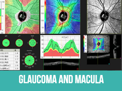 Glaucoma and Macular